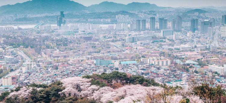 spring-korea