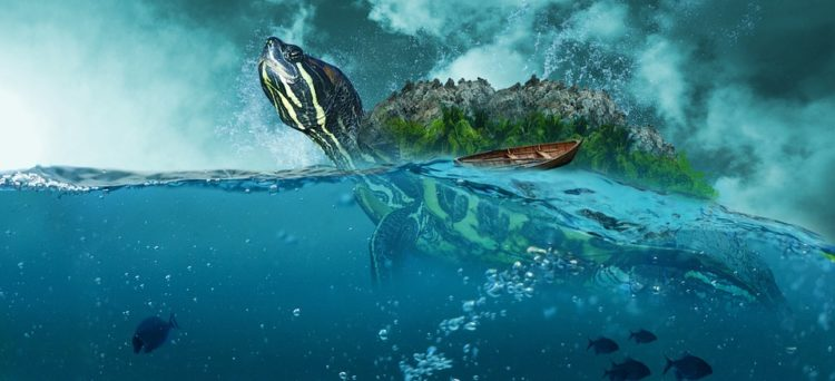 sea-turtle-unique-plots