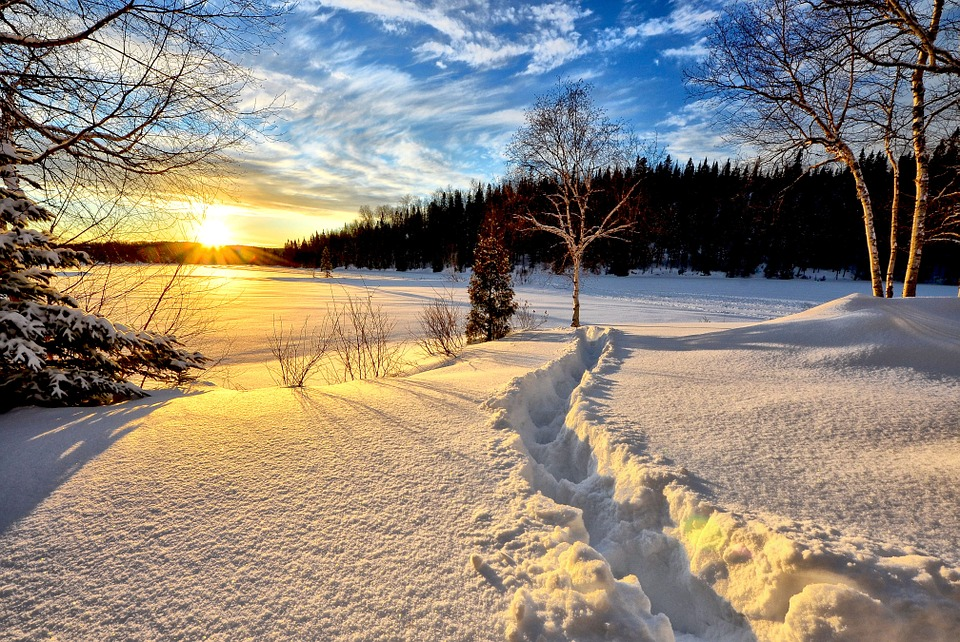 winter-landscape