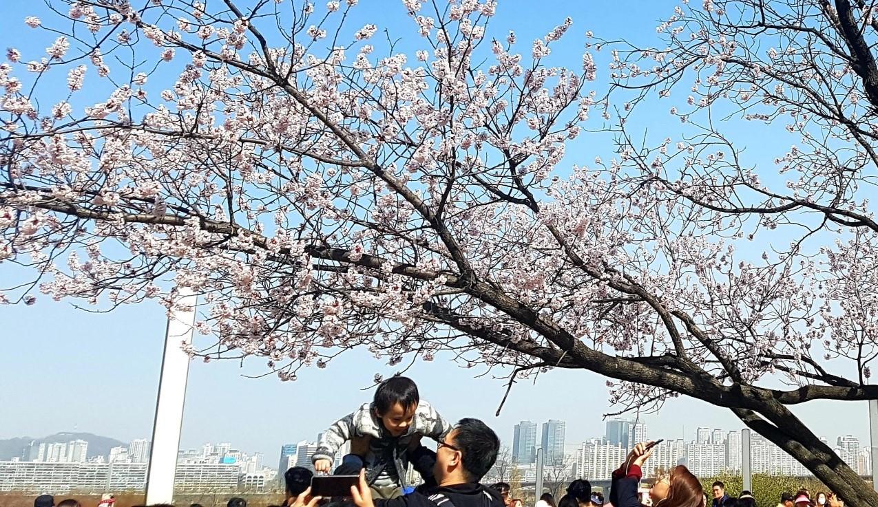 Giornata dei bambini in Corea